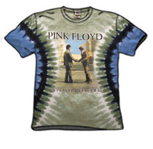 pink-floyd_tiedye_wish_a-a.jpg